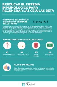Infografía explicativa sobre el proyecto de liposomas artificiales que contienen insulina y no generan rechazo por el sistema inmunológico de los diabéticos.